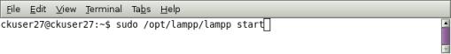 start xampp